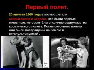 Первый полет. 20 августа 1960 года в космос летали собаки Белка и Стрелка, эт