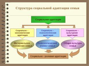 Структура социальной адаптации семьи Социальная адаптация Социально – экономи