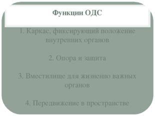Функции ОДС 1. Каркас, фиксирующий положение внутренних органов 2. Опора и за