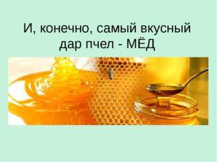 И, конечно, самый вкусный дар пчел - МЁД