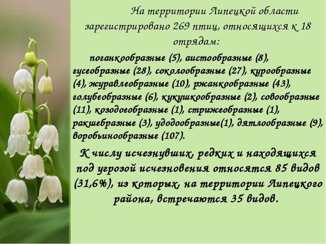 На территории Липецкой области зарегистрировано 269 птиц, относящихся к 18 о...