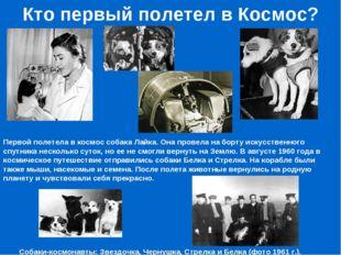 Кто первый полетел в Космос? Первой полетела в космос собака Лайка. Она прове
