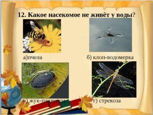 12. Какое насекомое не живёт у воды? а)пчела б) клоп-водомерка в) жук-плавуне