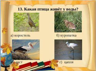 13. Какая птица живёт у воды? а) коростель б) куропатка в) аист г) цапля