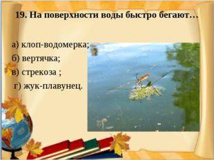 19. На поверхности воды быстро бегают…  а) клоп-водомерка; б) вертячка; в)