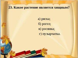 23. Какое растение является хищным? а) ряска; б) рогоз; в) росянка; г) пузыр