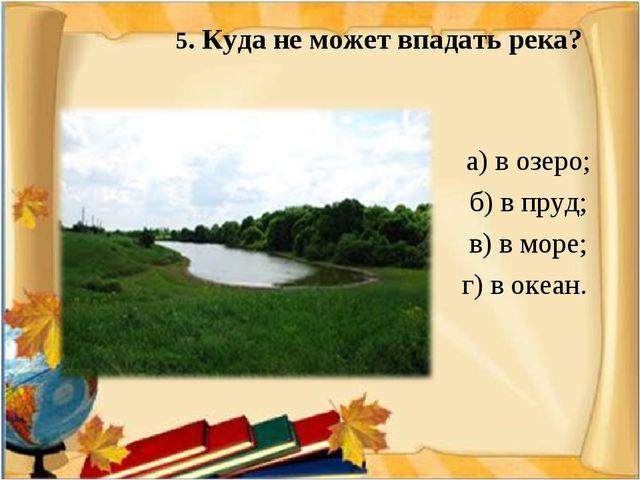 5. Куда не может впадать река? а) в озеро; б) в пруд; в) в море; г) в океан.