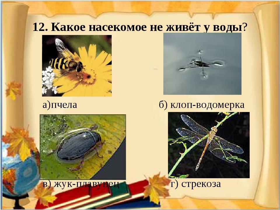 12. Какое насекомое не живёт у воды? а)пчела б) клоп-водомерка в) жук-плавуне...