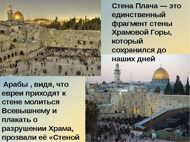 Арабы , видя, что евреи приходят к стене молиться Всевышнему и плакать о раз...