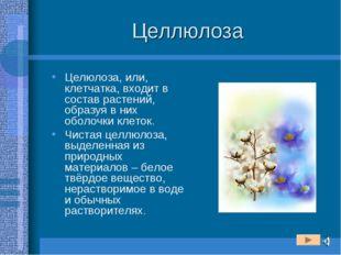 Целлюлоза Целюлоза, или, клетчатка, входит в состав растений, образуя в них о