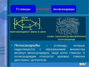 Полисахариды – углеводы, которые гидролизуются с образованием множества молек
