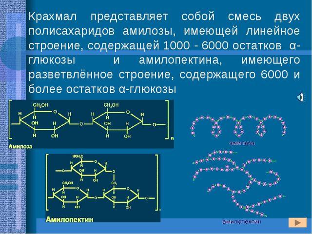 Крахмал представляет собой смесь двух полисахаридов амилозы, имеющей линейное...