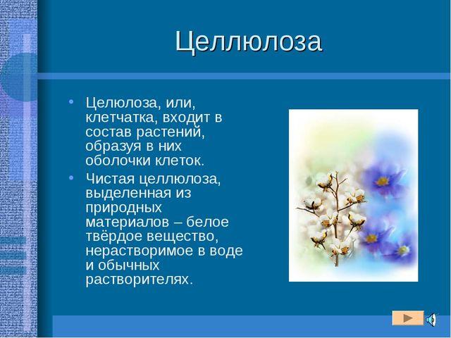 Целлюлоза Целюлоза, или, клетчатка, входит в состав растений, образуя в них о...