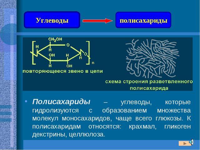 Полисахариды – углеводы, которые гидролизуются с образованием множества молек...