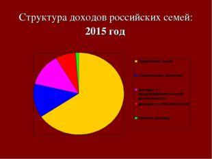 Структура доходов российских семей: 2015 год