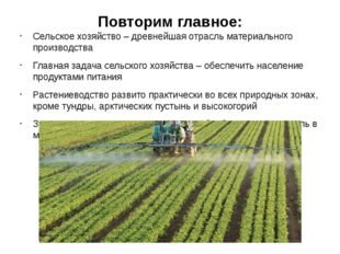 Повторим главное: Сельское хозяйство – древнейшая отрасль материального произ