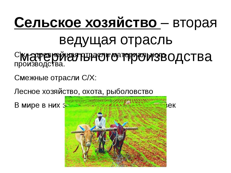 Сельское хозяйство – вторая ведущая отрасль материального производства С\х –...