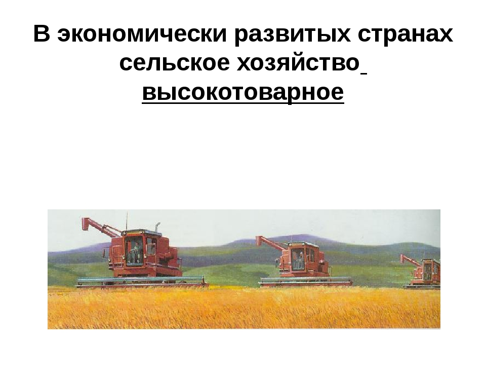 В экономически развитых странах сельское хозяйство высокотоварное