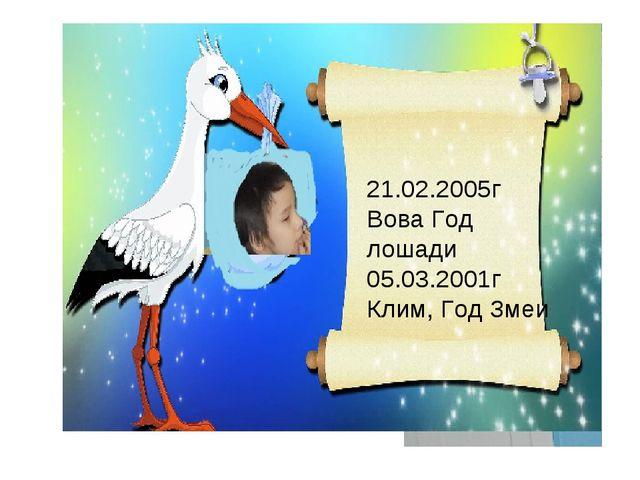 21.02.2005г Вова Год лошади 05.03.2001г Клим, Год Змеи
