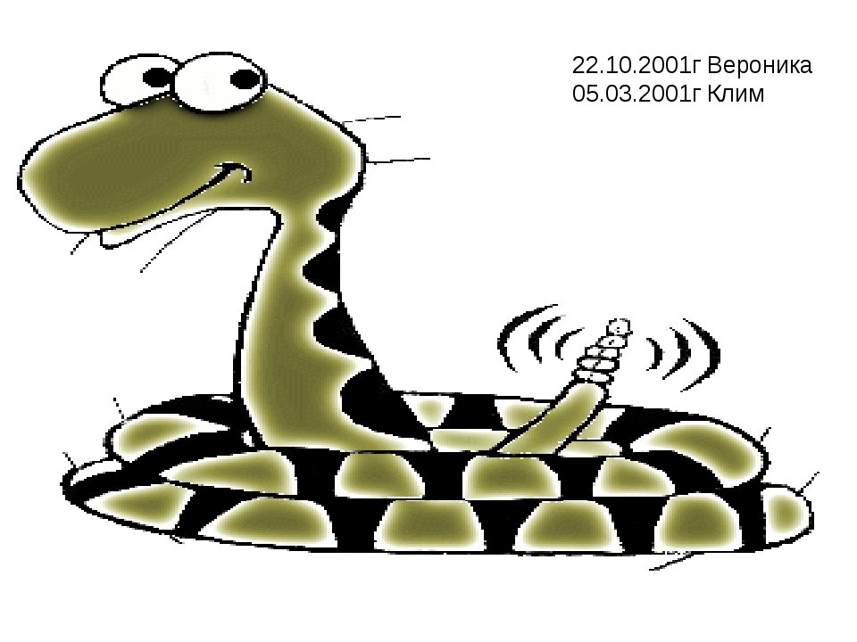 22.10.2001г Вероника 05.03.2001г Клим