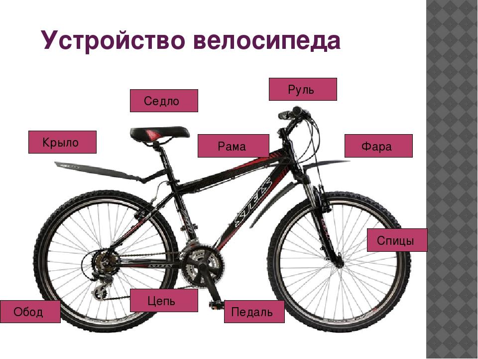 Устройство велосипеда Крыло Седло Рама Руль Цепь Педаль Спицы Фара Обод