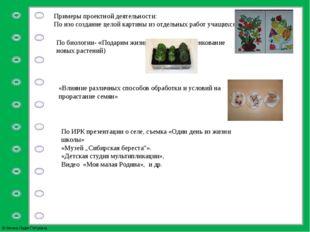 Примеры проектной деятельности: По изо создание целой картины из отдельных ра