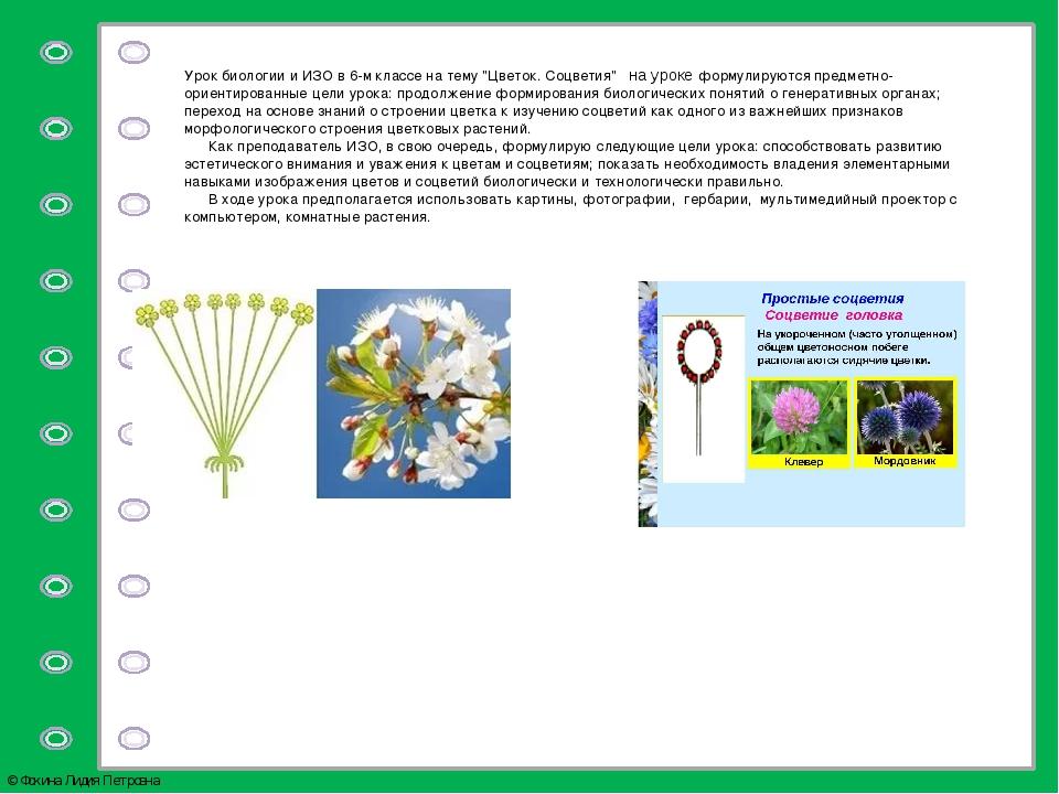 """Урок биологии и ИЗО в 6-м классе на тему """"Цветок. Соцветия""""на уроке формул..."""