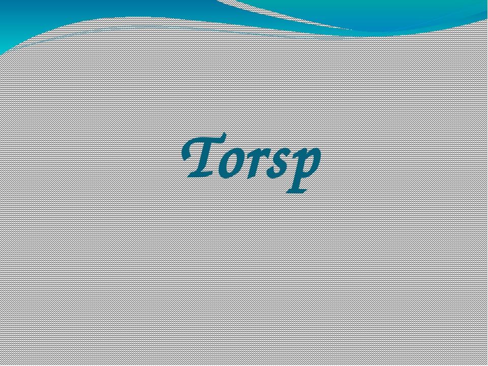 Torsp