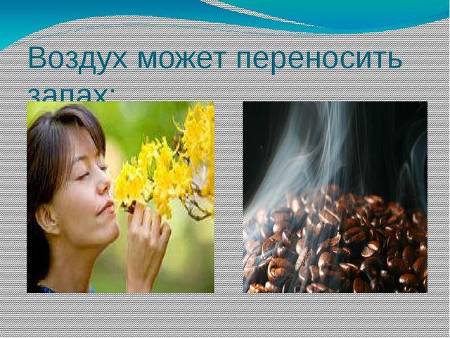 Воздух может переносить запах: