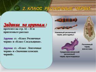 2. КЛАСС РЕСНИЧНЫЕ ЧЕРВИ. Большинство свободноживущих плоских червей — это ре