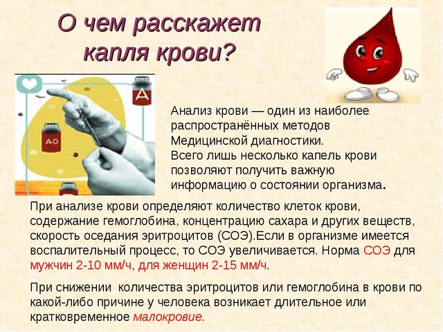 О чем расскажет капля крови? Анализ крови— один изнаиболее распространённых...