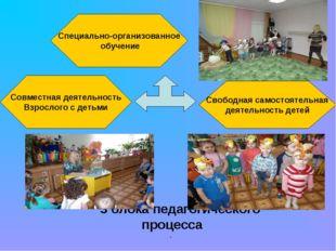 Специально-организованное обучение 3 блока педагогического процесса ·