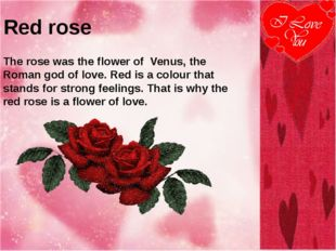 Red rose The rose was the flower of Venus, the Roman god of love. Red is a co