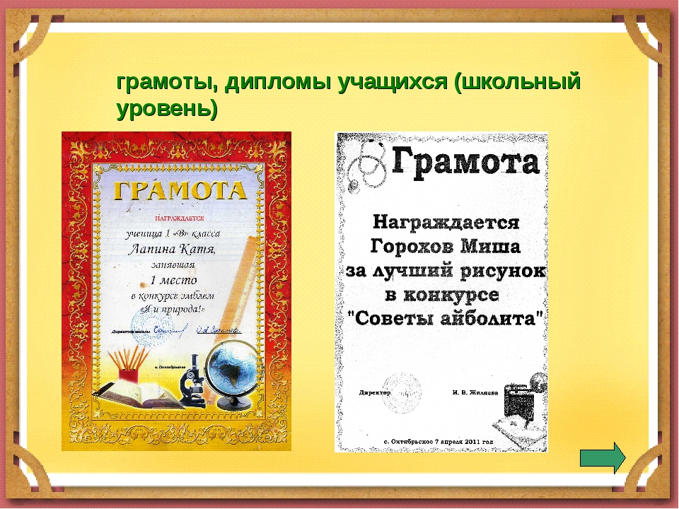 грамоты, дипломы учащихся (школьный уровень)
