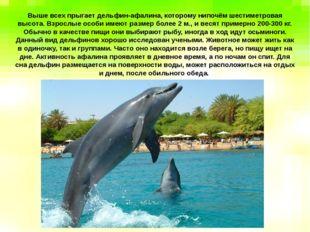 Выше всех прыгает дельфин-афалина, которому нипочём шестиметровая высота. Вз