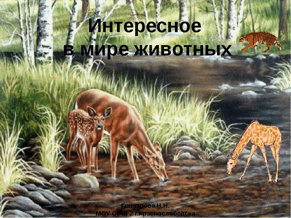 Гончарова Н.Н. МОУ СОШ 2 г.Краснослободска Интересное в мире животных