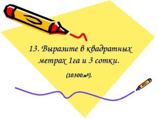 13. Выразите в квадратных метрах 1га и 3 сотки. (10300м²).