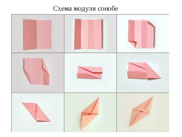 Схема модуля сонобе
