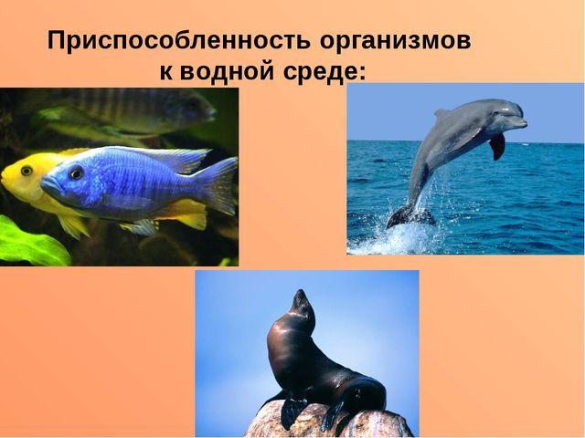 Приспособленность организмов к водной среде: