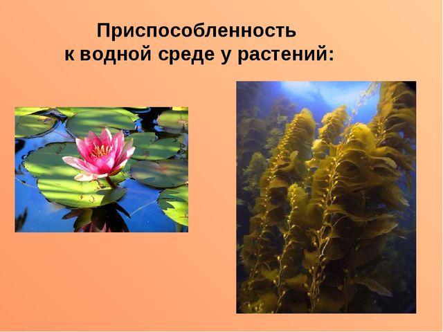 Приспособленность к водной среде у растений: