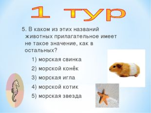 5. В каком из этих названий животных прилагательное имеет не такое значение,