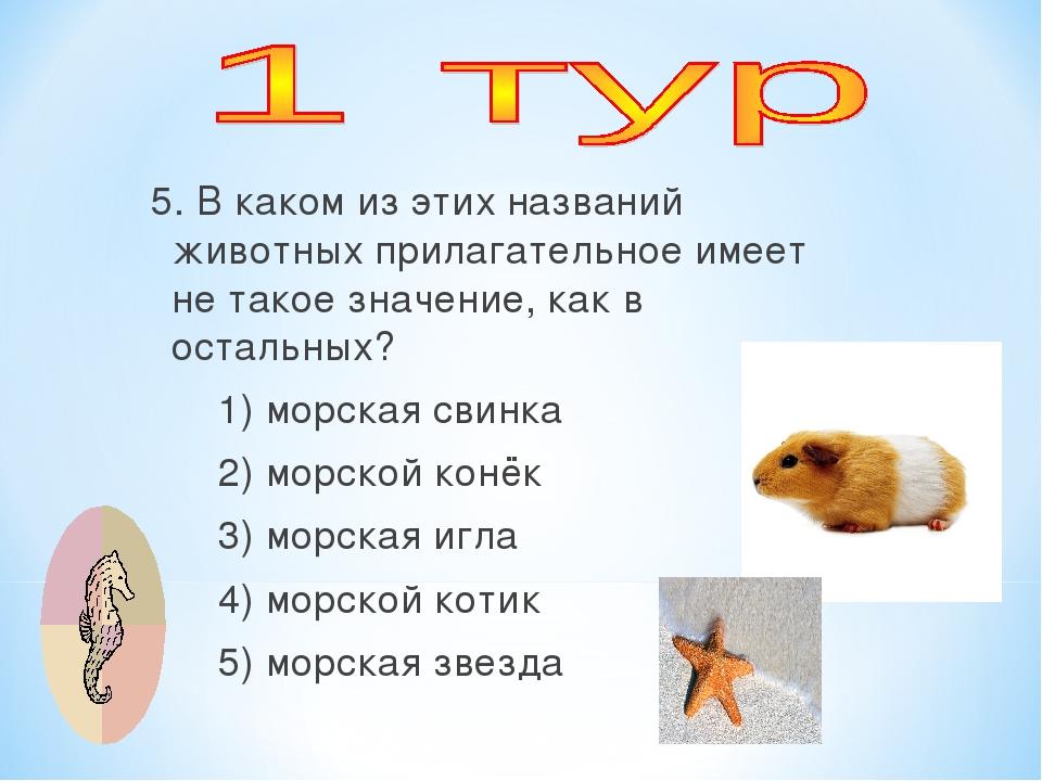 5. В каком из этих названий животных прилагательное имеет не такое значение,...