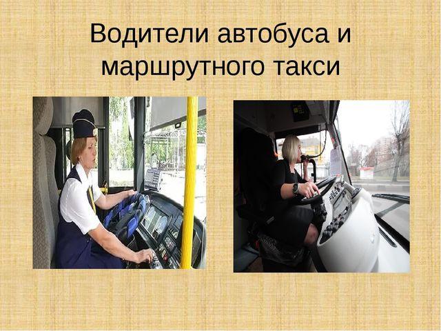 Водители автобуса и маршрутного такси