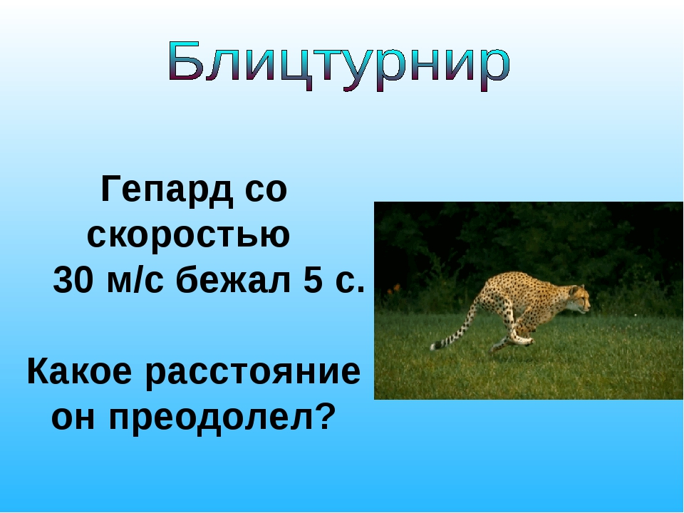 Гепард со скоростью 30 м/с бежал 5 с. Какое расстояние он преодолел?