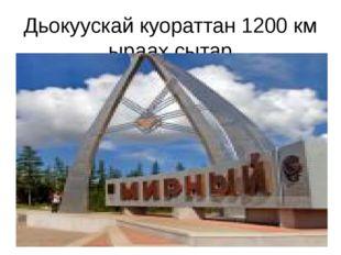 Дьокуускай куораттан 1200 км ыраах сытар
