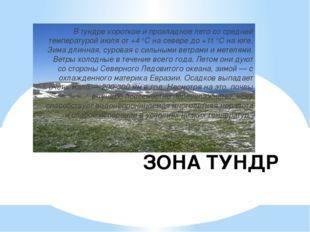 ЗОНА ТУНДР В тундре короткое и прохладное лето со средней температурой июля о