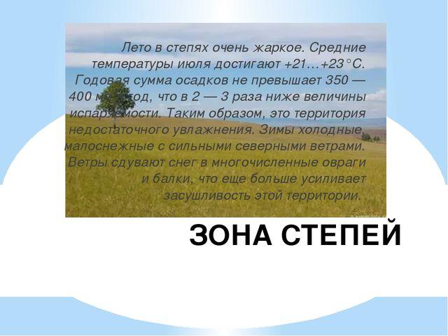 ЗОНА СТЕПЕЙ Лето в степях очень жаркое. Средние температуры июля достигают +2...