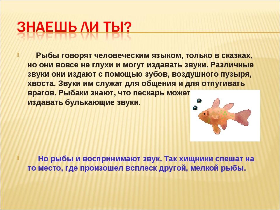 Рыбы говорят человеческим языком, только в сказках, но они вовсе не глухи и...