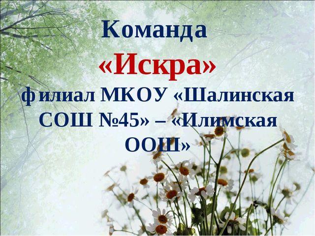Команда «Искра» филиал МКОУ «Шалинская СОШ №45» – «Илимская ООШ»
