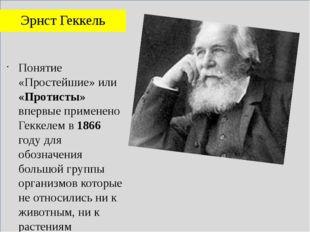 Эрнст Геккель Понятие «Простейшие» или «Протисты» впервые применено Геккелем